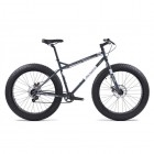 Fat Bike - Ashpalt